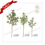 최신 판매 Narture 녹색 크리스마스 나무 스트로부스소나무는 Ornamental 가정 정원을%s 실내에를 위한 분기한다