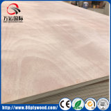 Okoume de gran tamaño modificado para requisitos particulares hizo frente a la madera contrachapada comercial