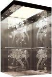 기계 룸 (RLS-240) 없는 독일 전송자 엘리베이터