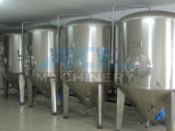 Strumentazione fresca sanitaria di preparazione della birra (ACE-FJG-3H)