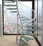 Escadaria espiral de vidro Twisted da alta qualidade com o passo de vidro antiderrapante e os trilhos de vidro de Frameless