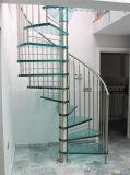 Escadaria espiral de vidro moderna do aço inoxidável de DIY/escadaria barato espiral com a balaustrada do aço inoxidável