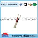 Câble de fil électrique solide/échoué de Rvvb d'isolation de PVC de conducteur