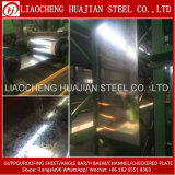 En 10326 Hot Galvanized Coil Steel in Coil