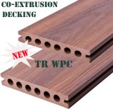 Decking protegido WPC Anti-UV da fonte