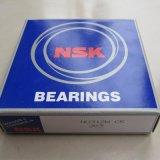 Cuscinetto a rullo cilindrico della gabbia del rame & dell'acciaio dell'OEM NSK SKF Koyo (N204 E NF204 E NJ204 E NU204 E NUP204 E)