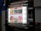 Impresora del fotograbado de las bolsas de plástico