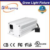 Apparier avec le ballast de la lampe 250With315W CMH Digitals de CMH/HPS/HID pour élèvent des systèmes de d'éclairage