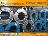La couleur a enduit les bobines en acier à de la bonne qualité