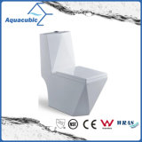 Siphonic One-Piece Dual Flush Ceramic Toilet (ACT5153)