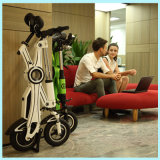 Ecorider Lithium 36V Brushless 250W oder 350W Folding E-Bicycle Electric Bike