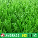 S Shape Yarn Synthetic Football Turf (ASS-50D)