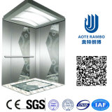 이탈리아 Gmv 시스템 (RLS-112)를 가진 가정 유압 별장 엘리베이터