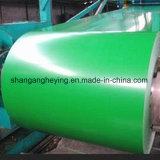 Steel/PPGI/Gi/PPGL 강철 코일이 입힌 중국 선반에 의하여 최신 담궈진 색깔에 의하여 직류 전기를 통했다
