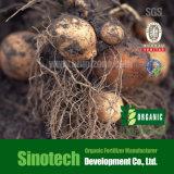 칼륨 Humate 조각 80% 토양 조절기
