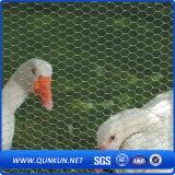 Acoplamiento de alambre hexagonal de pollo de la venta caliente 2016