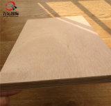 madeira compensada do eucalipto de 18mm Okoume