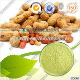 Manufacturer Supply Natural 98% Luteolin