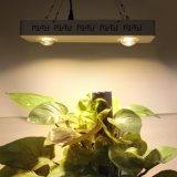 L'illuminazione completa di vendita calda LED di spettro della fabbrica della Cina coltiva Cxb chiaro 3590 200W