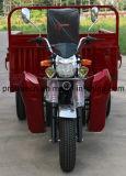 Cdi Igntionの大きい容器ボックス三輪車