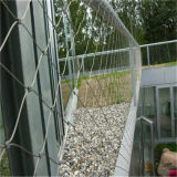 Веревочка диаманта нержавеющей стали/сетка кабеля для конструкции здания