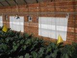 Da montagem infravermelha de cristal da parede do carbono calefator de quarto elétrico