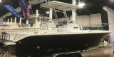 De Vissersboot van de Console van het Centrum van de glasvezel met Harde Bovenkant
