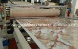 Chaîne de production en pierre en plastique d'extrusion de profil de PVC de nouvelle conception