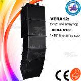Im Freienerscheinen-AudioVera12+ ausgebaute 12inch passive Zeile Reihen-Lautsprecher-System
