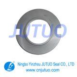 Joint mécanique/carbure aggloméré de silicone (SSiC)