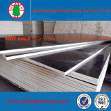 Fabrik Sell Eucalyptus Core Film Faced Plywood mit Cheap Price
