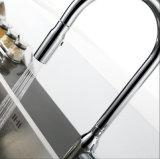 A placa do cromo terminada retira o misturador da cozinha