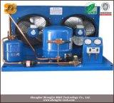 Condensatore del frigorifero raffreddato aria/unità di condensazione