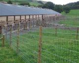 A alta qualidade galvanizou o rolo de aço da cerca dos cervos do metal para a venda