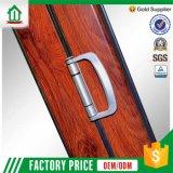 Moderner Schlafzimmer-Tür-Entwurf (WJ_FD005)