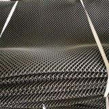 Austeren-Ineinander greifen-Beutel/Plastiknetz/Plastikineinander greifen-Beutel
