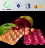 Polpa do molde e bolha dada forma vácuo que empacotam bandejas dos PP para o empacotamento da fruta e verdura