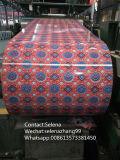Blumen-Entwurfs-Farbe beschichtete Stahlringe, PPGI und PPGL