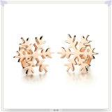 Brinco do aço inoxidável da jóia da forma dos acessórios de forma (EE0134)