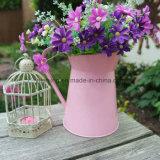 Arrosoirs colorés/cruche/pichet/position pour le jardin/bureau/à la maison