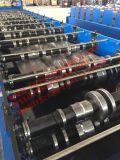 Colorear el rodillo del panel de la azotea de la buena calidad del acero PPGI que forma la máquina con la certificación del Ce