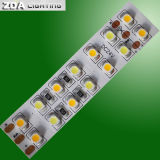 SMD 3528 LED Raya 240LEDs / M con Cct Dimming