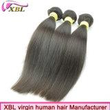 Extensão brasileira do cabelo humano de Remy da qualidade superior do fabricante do cabelo
