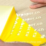 Länge 25m der einfacher Schnitt-klare Farben-Wärmeübertragung-Film-/Vinylbreiten-50cm für alles Gewebe