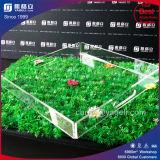 Plateau chaud d'acrylique d'espace libre de vente d'usine