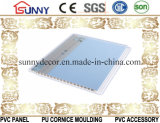 Горячая штемпелюя панель потолка Стен-PVC PVC 2016 для украшения