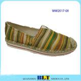 かわいい木靴が付いているかわいいブランドのキャンバスの偶然靴