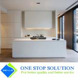 Mobília moderna Handless popular nova do gabinete de cozinha (ZY 1047)