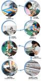 Válvula eléctrica motorizada CE del agua del control de flujo del NSF de la válvula del acero inoxidable de 2 maneras 3/4 '' (T20-S2-C)
