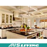 Mobília dos gabinetes de cozinha do bloco liso da forma (AIS-K285)